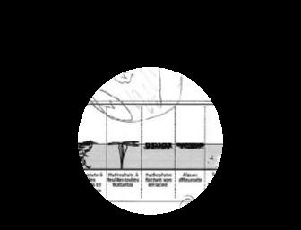 Pratiquer la géographie environnementale sur un terrain de thèse : un apprentissage réciproque ?